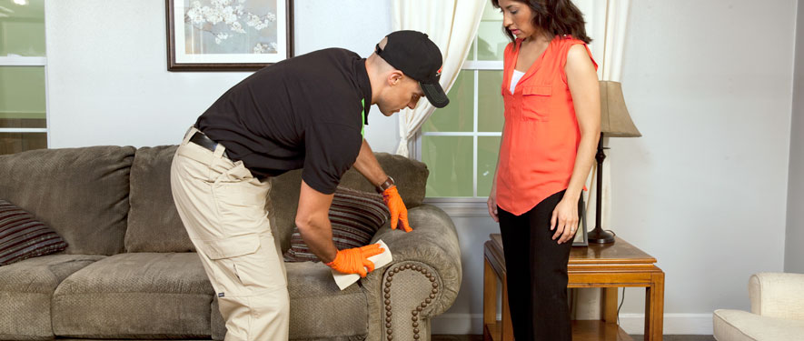 Medina, OH carpet upholstery cleaning
